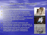 """Парафиновые брикеты """"Капкан"""" Киев"""