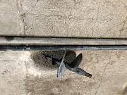 Набор для бурения большим диаметром бурголовка гарпуна диаметром 500 Одесса