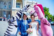 Вы еще в поисках свадебного ведущего с музыкой - Вам сюда Одесса