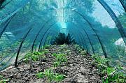 Укриття від сонця для рослин Shadow BIG 60 % 160 x 120 3 метри Харьков