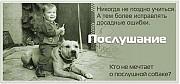 Консультации Кинолога Черновцы